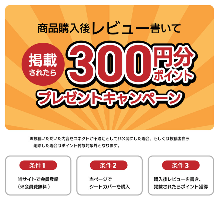 購入後レビューを書いて掲載されたら300ポイントプレゼントキャンペーン